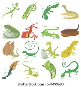 lizard images stock photos