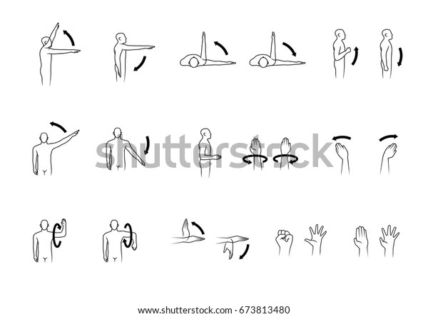 Movement Human Shoulder Arm Hand Set Stock Vector (Royalty