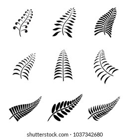 Fern Stock Images, Royalty-Free Images & Vectors