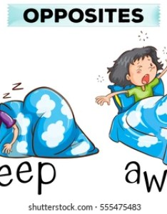 Opposite words for asleep and awake illustration also images stock photos  vectors shutterstock rh