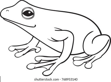 frog line drawing Images, Stock Photos & Vectors