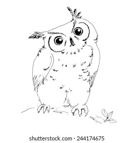 Owl Face Stock Images, Royalty-Free Images & Vectors