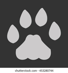 lion paw images stock