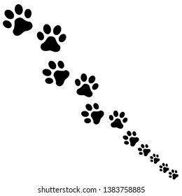 Animal Footprints Images, Stock Photos & Vectors
