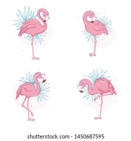flamingo drawing images stock