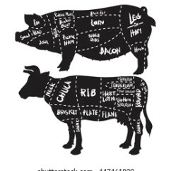 Pig Cuts Diagram Three Phase Plug Wiring Pork Butchery Set Hand Stock Vector Royalty Free And Beef Drawn On White Background Drawing