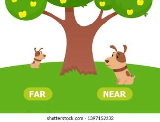 far near cartoon opposites vector teaching shutterstock these