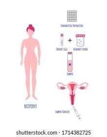 Hormon : hormon, Hormon, Stock, Images, Shutterstock