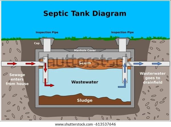 Reef Tank Diagram Free Download Wiring Diagrams Pictures Wiring