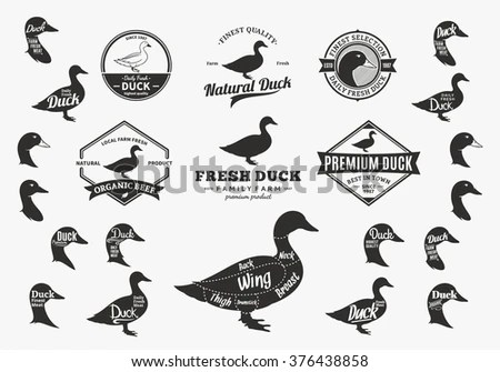 duck wing diagram 1972 chevrolet truck wiring set logo cuts stock vector royalty free of