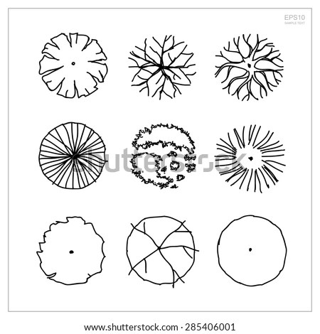 25+ Pine Tree Architectural Landscape Symbols Pictures and