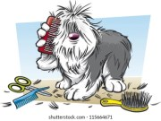 dog grooming cartoons stock