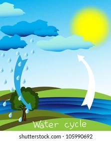 water cycle images stock