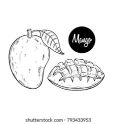 Mango Outline Images Stock Photos & Vectors Shutterstock