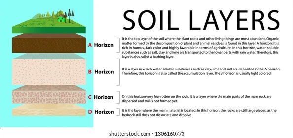 horizon diagram soil formation meyer plow e47 wiring images stock photos vectors shutterstock layers layer of education