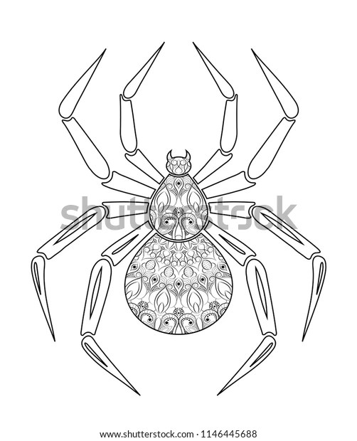 Spider Coloring Page Hand Drawn Pattern Stock Vector