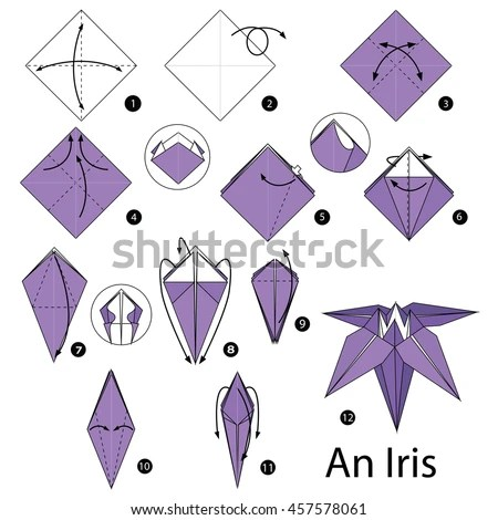 origami flower instruction diagram dart board height and distance step by instructions how make stock vector royalty free to an iris