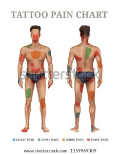 Tattoo pain chart most painful places on human body set head forehead nape hands palms also stock vector royalty free rh shutterstock