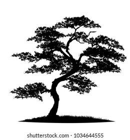 Similar Images, Stock Photos & Vectors of Oak Tree Leaves