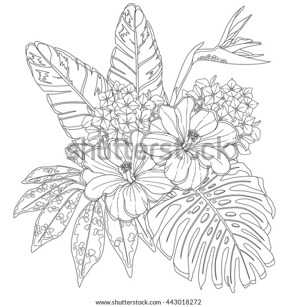 Tropical Flowers Leaves Page Coloring Book Stock Vector