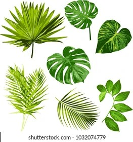 clipart images stock photos