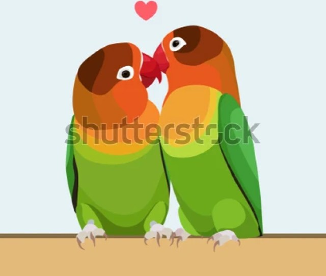 Two Parrots Parrots Are Inseparable Cute Birds Flat Design Vector Illustration