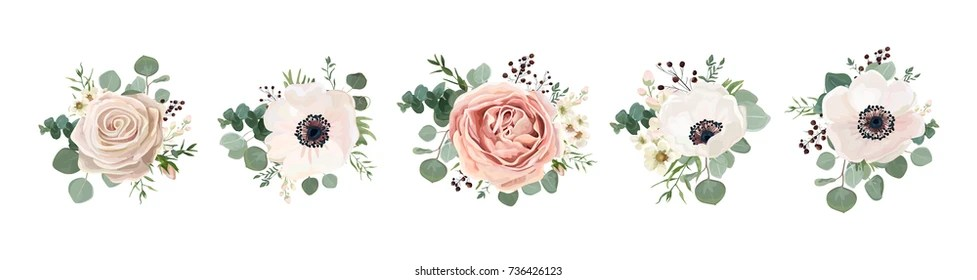 vector flowers images stock