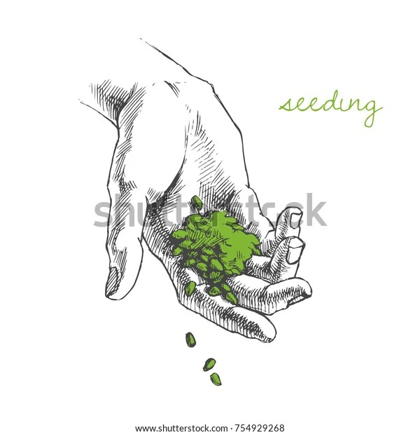 Vector Illustration Hand Planting Seeds Handful Stock