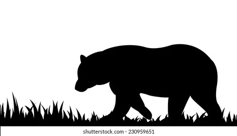 bear silhouette images stock