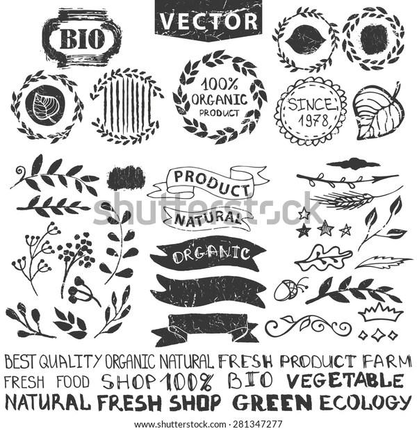 Vector Nature Bio Logo Templatebadgeslabelsfloral