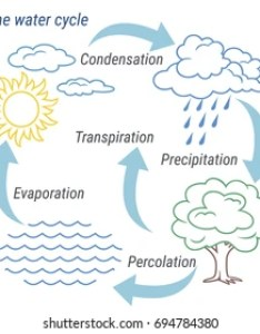 Vector schematic representation of the water cycle in nature illustration diagram also images stock photos  vectors shutterstock rh