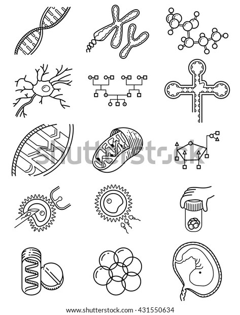 Vector Simplicity Science Icons Set Genetic Stock Vector
