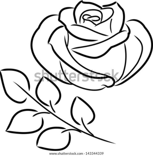 Vector Single Blooming Rose Outline Black Stock Vector