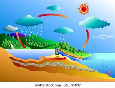 labelled diagram of water cycle 1986 toyota mr2 wiring images stock photos vectors shutterstock vector art for graphic or website layout