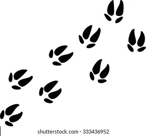 Pig-tracks Stock Images, Royalty-Free Images & Vectors