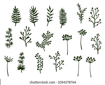 Willow Stock Images, Royalty-Free Images & Vectors