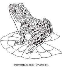 Frog Outline Images Stock Photos amp Vectors Shutterstock
