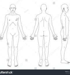 medical record human body diagram no sex 192650330 [ 1500 x 1357 Pixel ]