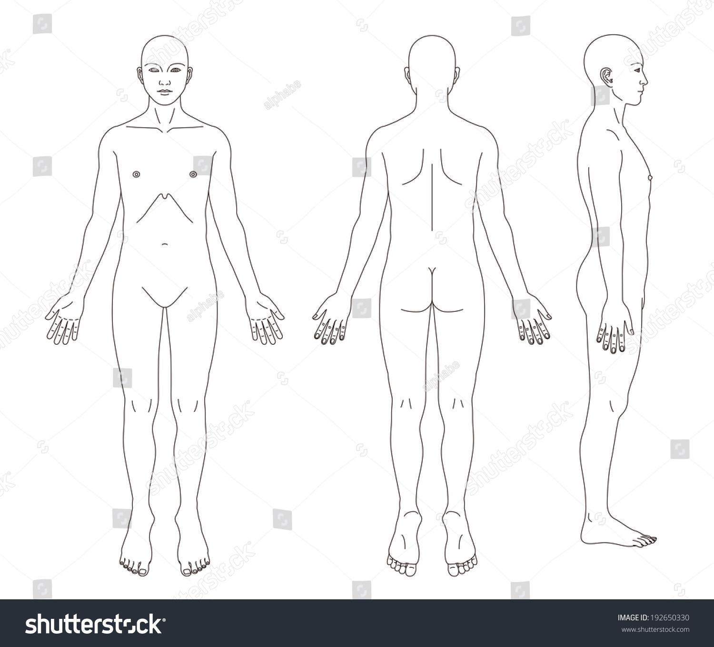 hight resolution of medical record human body diagram no sex 192650330