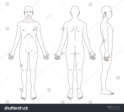 small resolution of medical record human body diagram no sex 192650330