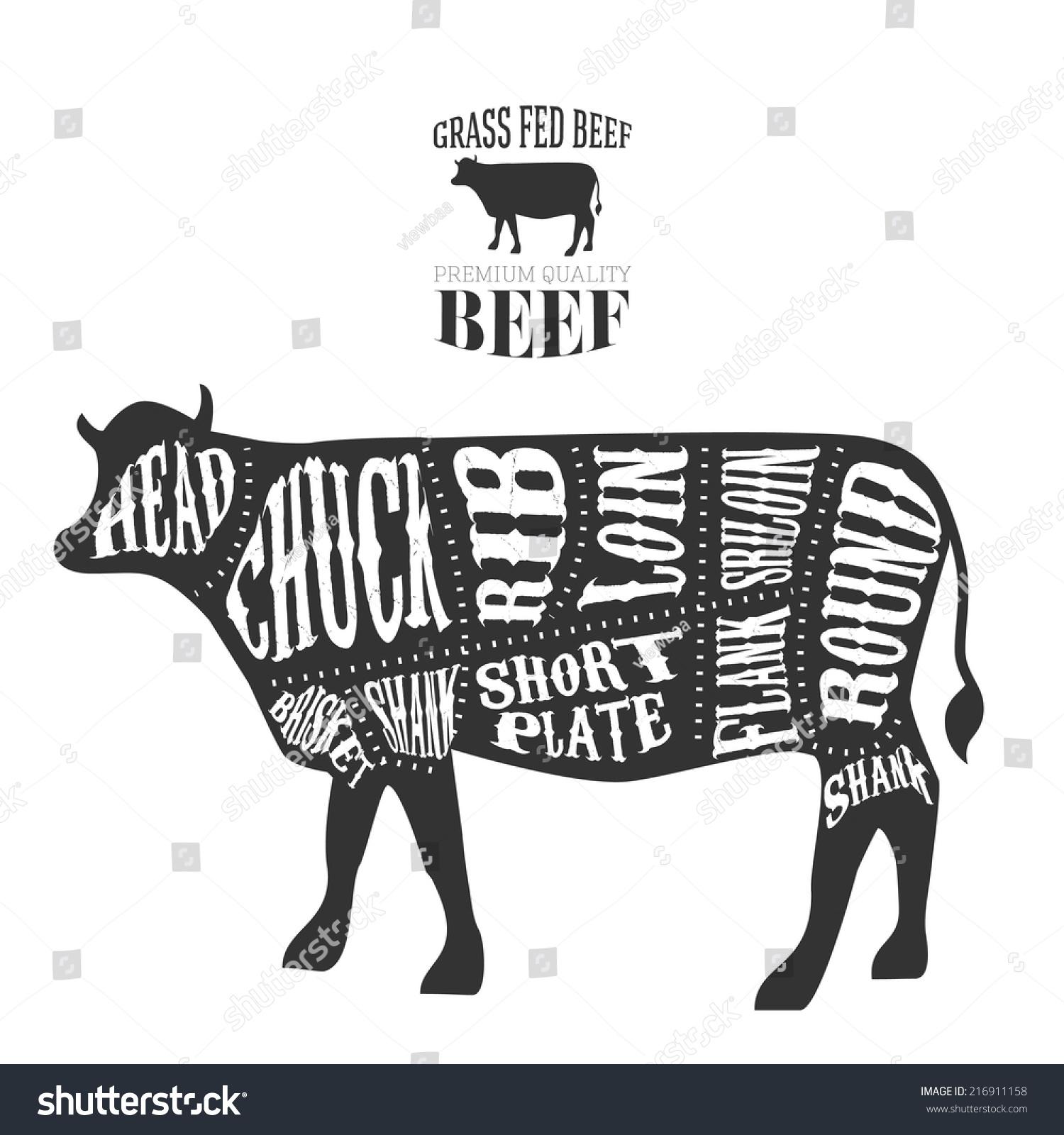 beef cow cut diagram megaflow wiring s plan royalty free vector cuts in vintage