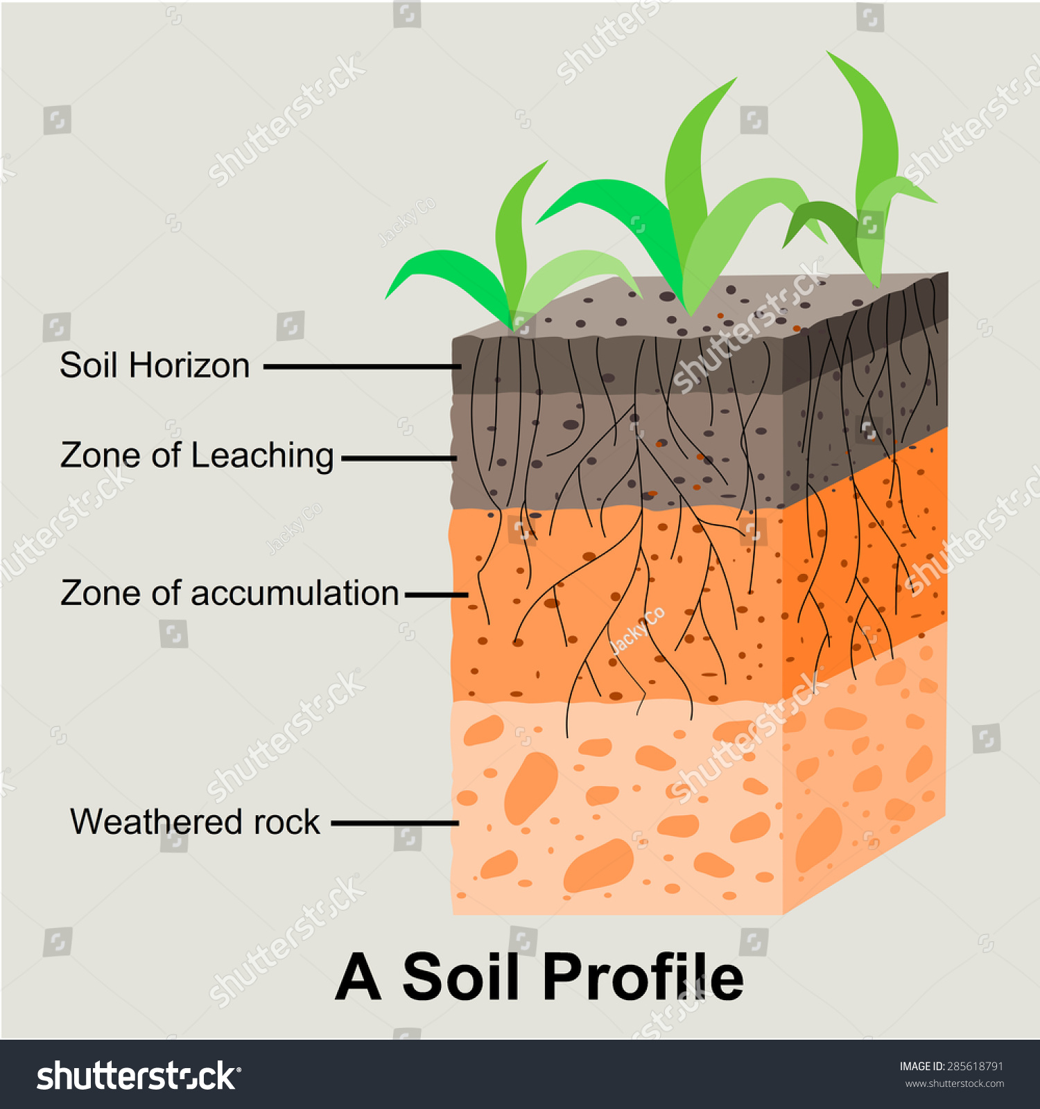 soil profile diagram of michigan acura integra wiring royalty free formation and horizons 285618791