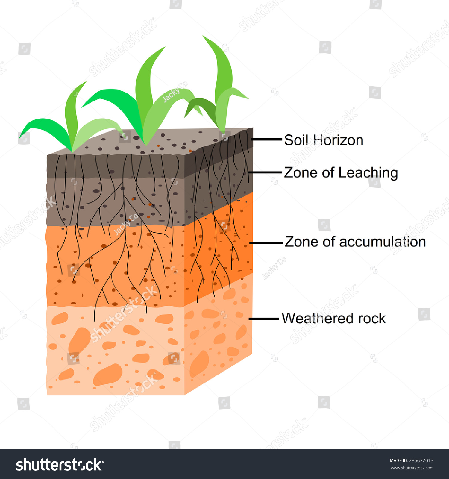 Soil Texture Structure Worksheet