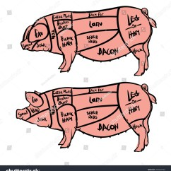 Pig Cuts Diagram Yamaha Outboard Royalty Free Cut Of Meat Set Hand Drawn 445962784