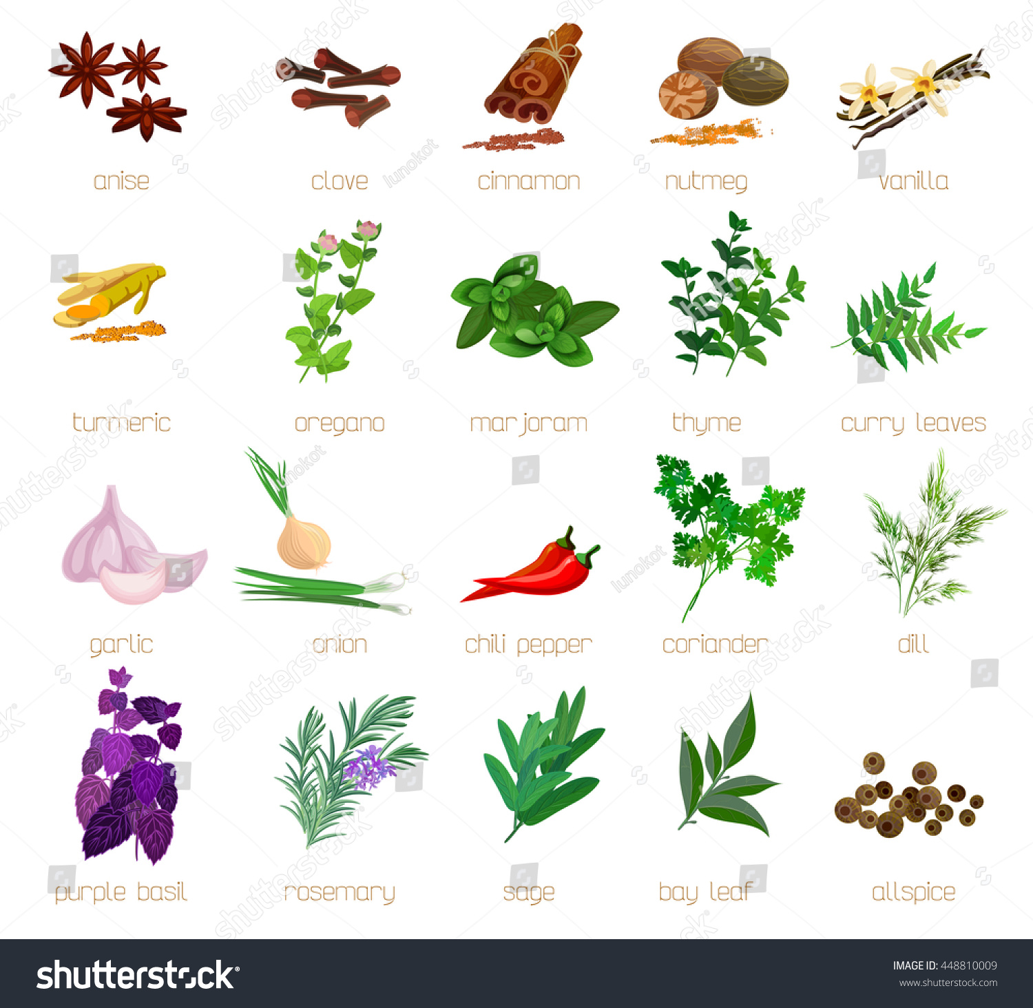Herbs And Spices With Signed Names Big Stock Photo