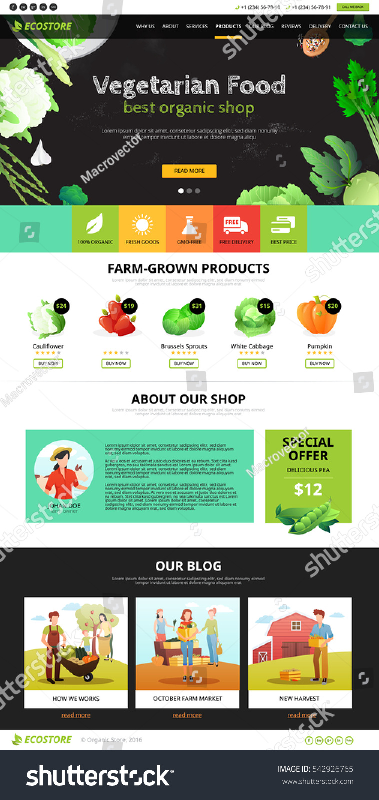 hight resolution of best organic farm eco food shop of vegetarian products web page flat vector illustration