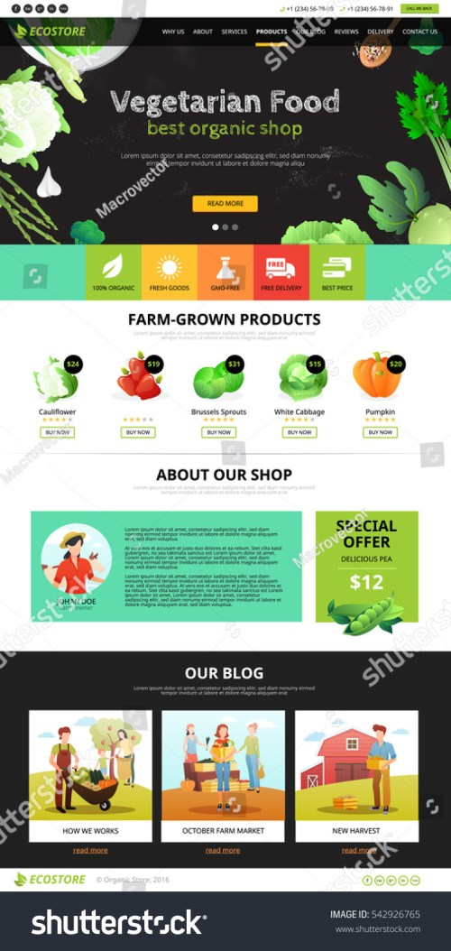 small resolution of best organic farm eco food shop of vegetarian products web page flat vector illustration
