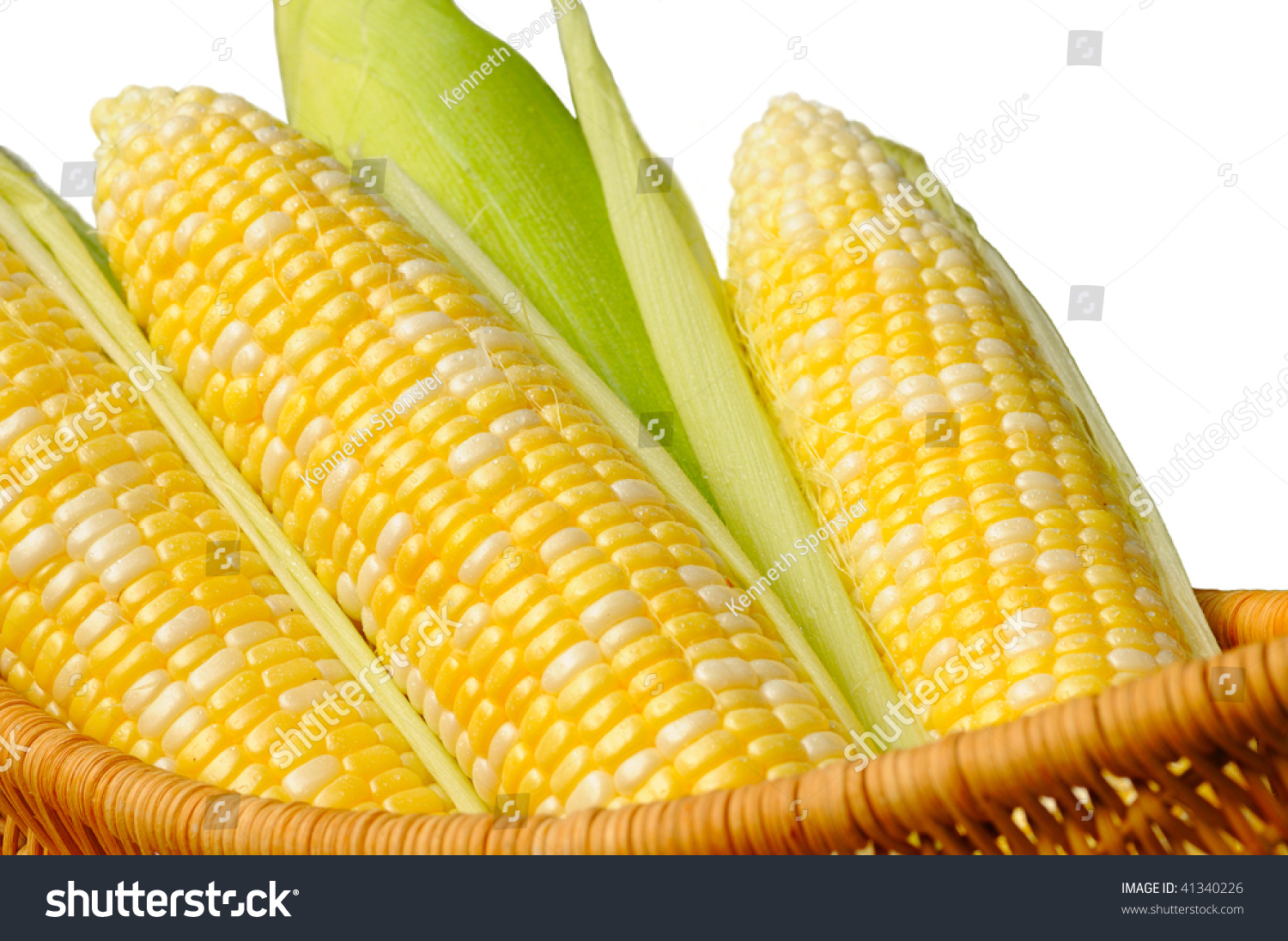 A Basket Of Sweet Corn, Three Ears Partially Husked, Isolated On White Stock Photo 41340226 : Shutterstock