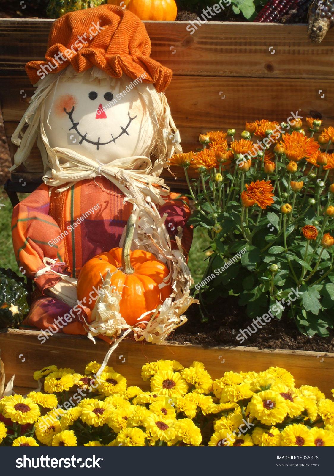 Smiling Scarecrow Holds Pumpkin Among Wagon Stock Photo