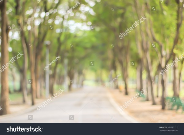 Outdoor Background Pictures 5X7ft Grand Outdoor Park